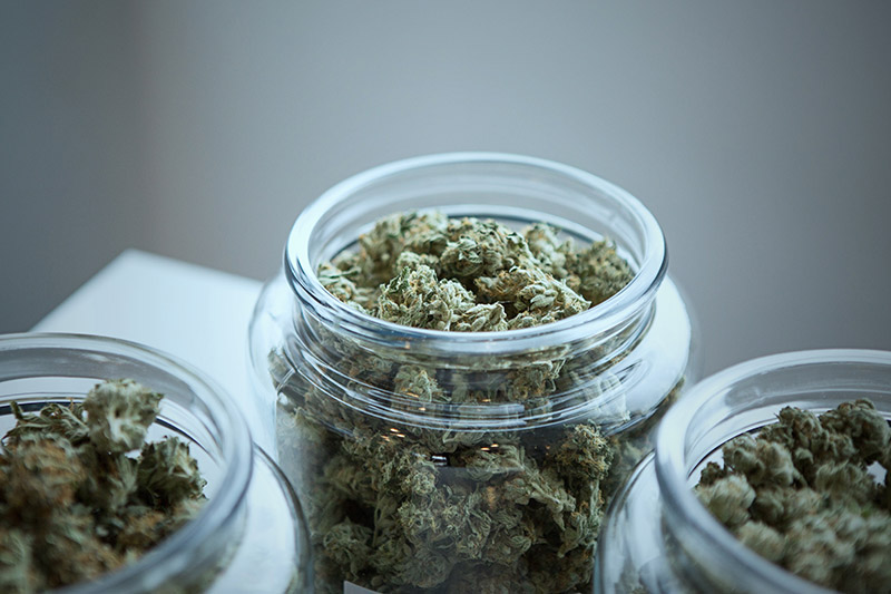 DIFS Must Give Banks Guidance On Pot Business Under Budget